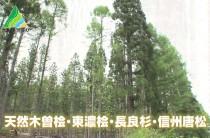 木曽川流域材フルチョイスパッケージ