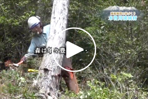 木曽川流域材 PRビデオ